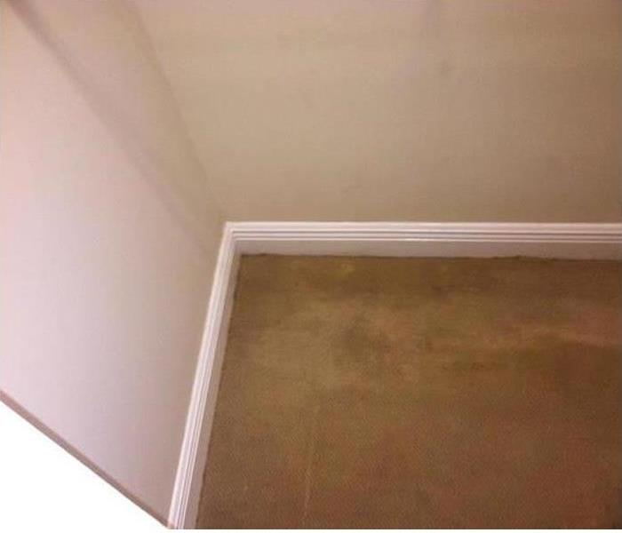Denison Home with Mold Under Carpeting After