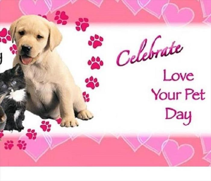 Community National Love Your Pets Day!