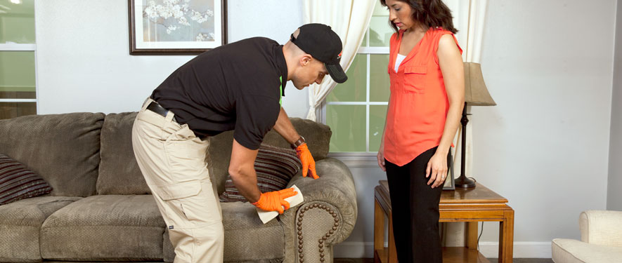 Sherman, TX carpet upholstery cleaning